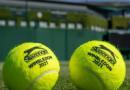 Il torneo numero 1 al numero 1: Djokovic conquista l'erba di Wimbledon